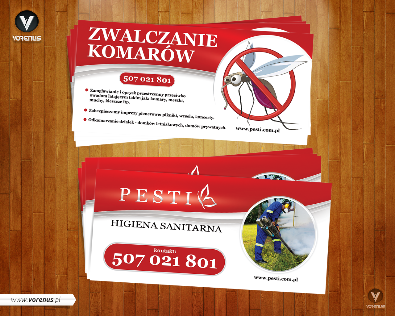 PESTI Sanitary Hygiene - Mosquitos. Flyer DL 99x210mm project presentation